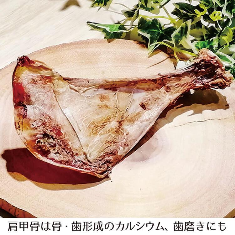 本州鹿 ウチワの画像