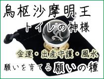 願いを育てる願いの種〜烏枢沙摩明王(トイレの神様)〜