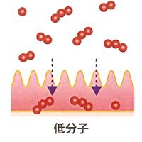 フローレイプラス 低分子