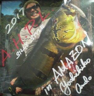 A.H.P.L in AMAZON画像