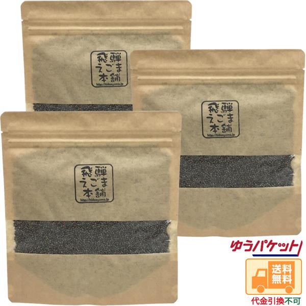 【定期購入】飛騨えごま実(生実)100g×3パックセット画像