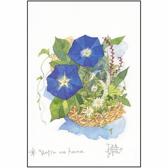 三好貴子 ポストカード(夏の花)の画像