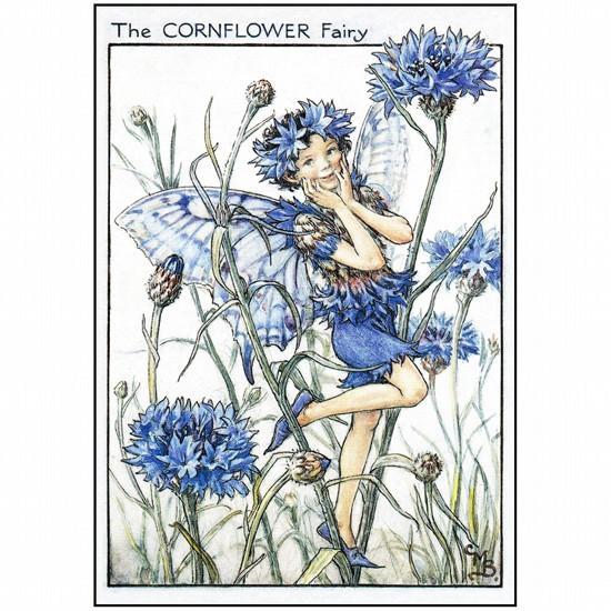 花の妖精ポストカード FF-039の画像