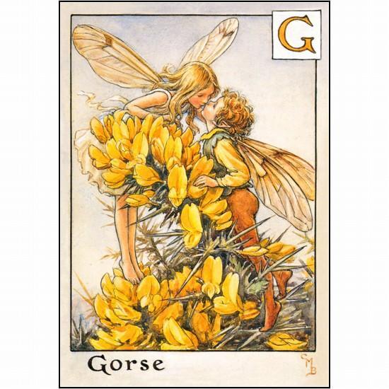 花の妖精ポストカード FF-026の画像