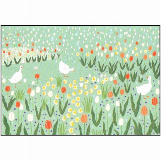 ひらいみも ポストカード(花風景:チューリップ)の画像
