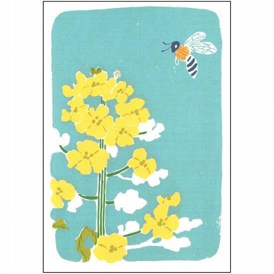 北原明日香 ポストカード(菜の花)の画像