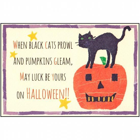 サラ・バトル ポストカード(パンプキンの上に猫)の画像