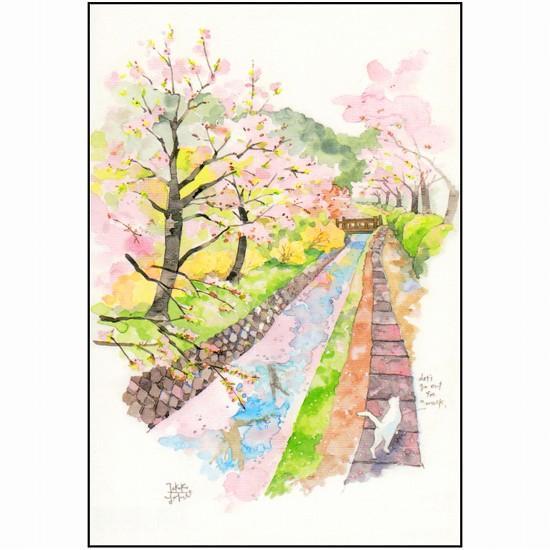 三好貴子 ポストカード(川沿い桜)の画像