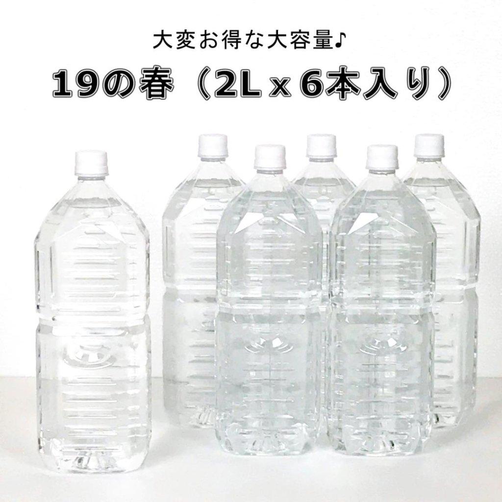 19の春(スーパーつるりんでポン!)(2Lx6本入り)の画像