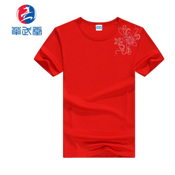ドライラインスートン太極拳Tシャツの画像