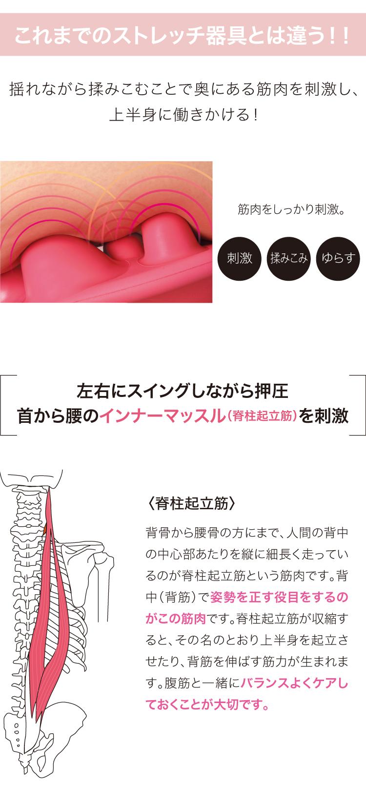これまでのストレッチ器具とは違う、上半身、インナーマッスル、筋肉を刺激