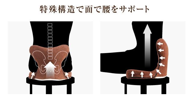 背面の腰椎サポートアーチ・ラウンド形状により、座った時に腰椎まわりをしっかり支えます。