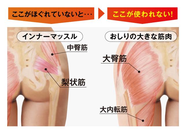 インナーマッスルがほぐれていないと、おしりの大きな筋肉が使われない