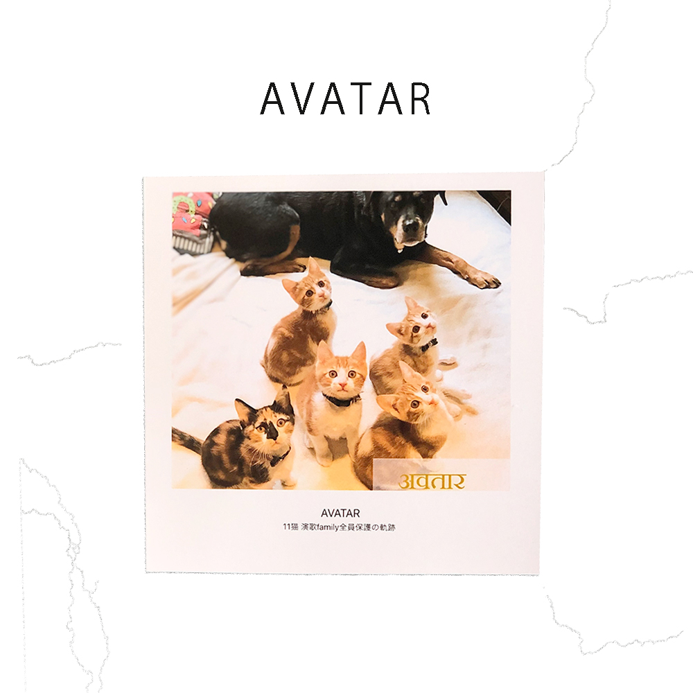 【再入荷】PHOTO BOOK ~AVATAR 演歌Family全員保護の軌跡~画像