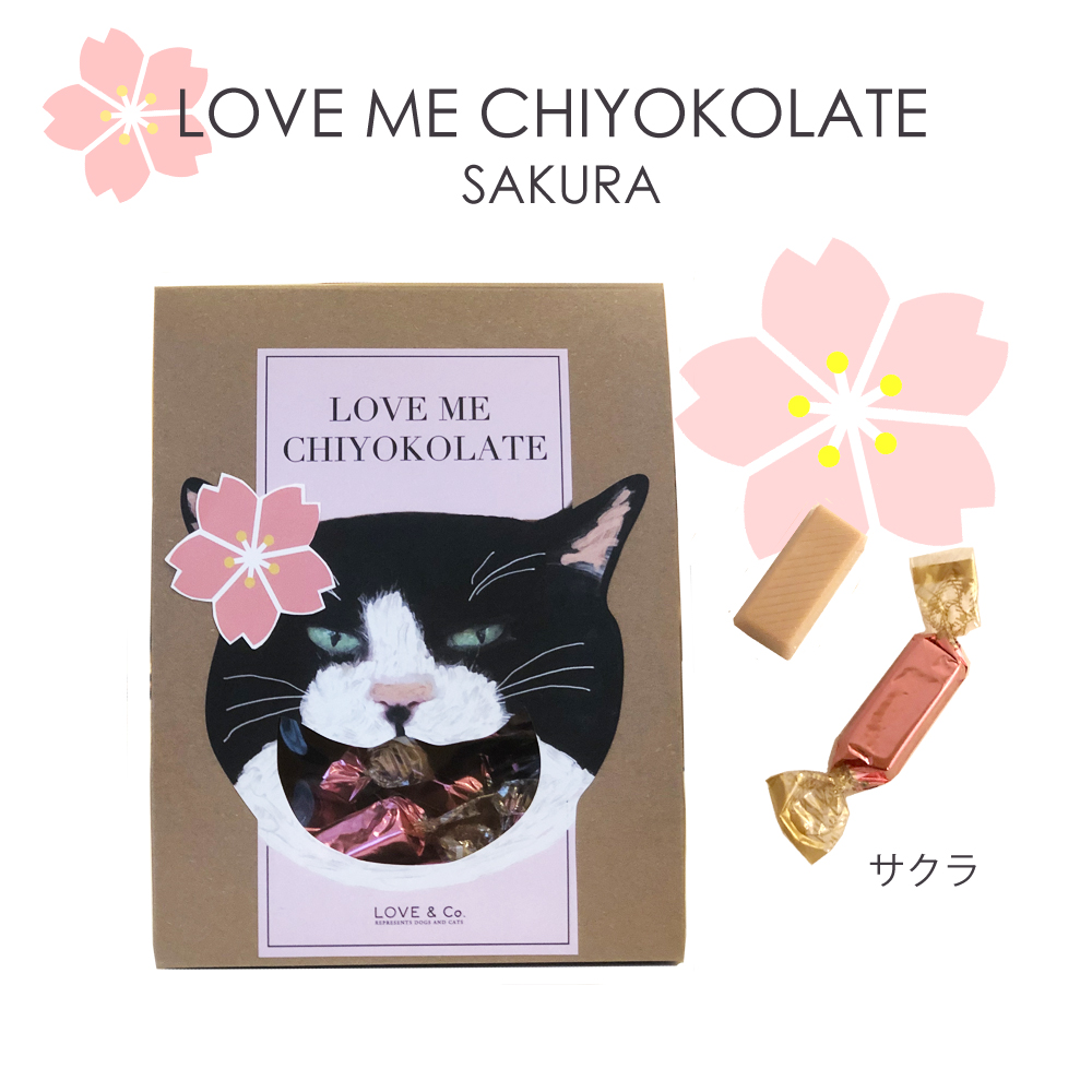 LOVE ME CHIYOKOLATE SAKURAの画像