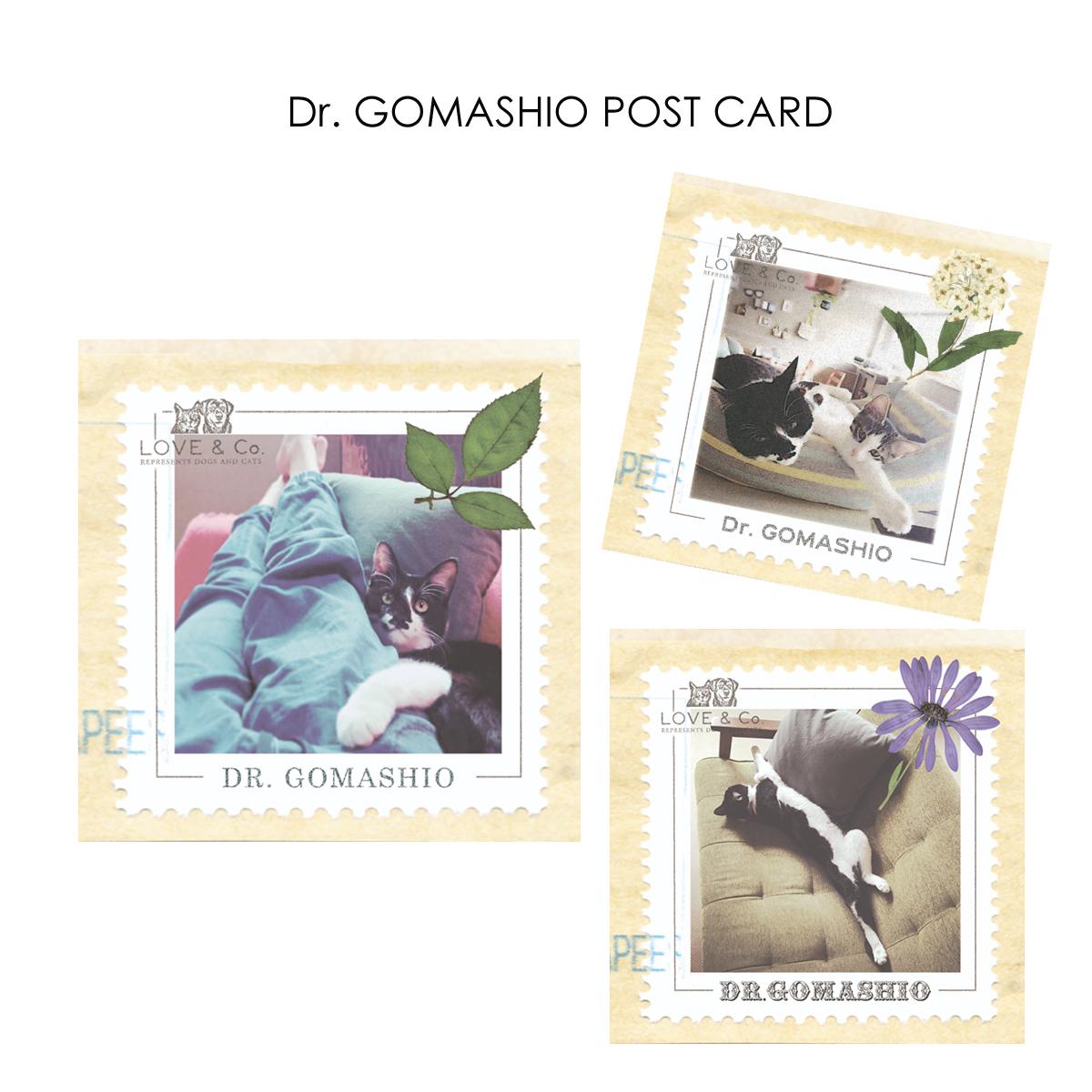 Dr. Gomashio ポストカード画像
