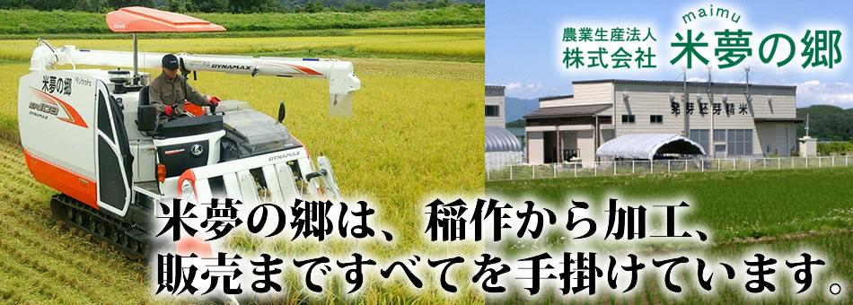白い発芽胚芽米、会津産コシヒカリ使用