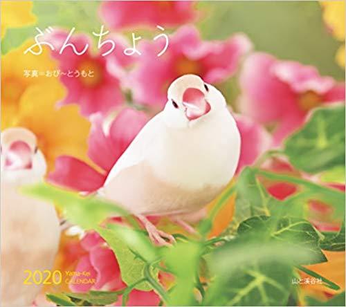 カレンダー2019 ぶんちょう 写真 おぴ~とうもとの画像