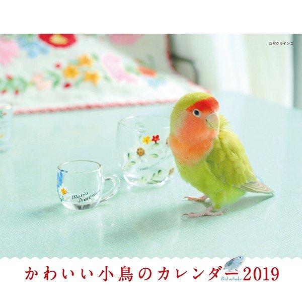 かわいい小鳥のカレンダー2019 写真 蜂巣文香画像