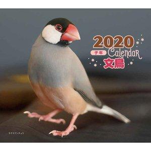 2019 文鳥 カレンダー 写真 伊藤美代子の画像