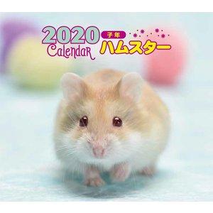 2019ハムスター カレンダー 写真 井川俊彦の画像