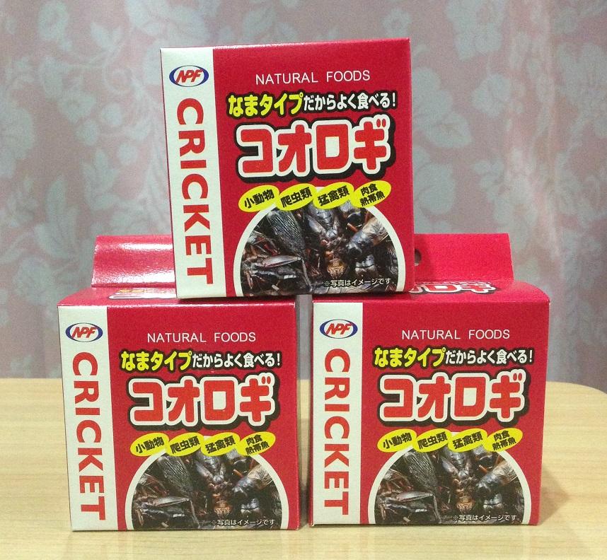 コオロギ40g(コオロギ缶)の画像