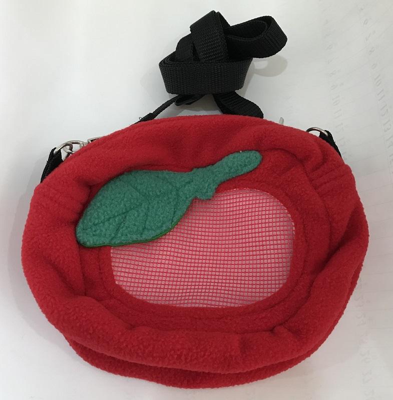 フルーツポーチ りんご  おでかけの画像
