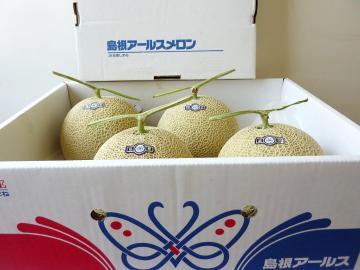 益田アールスメロン3 L 4玉 送料込の画像
