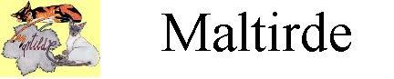 Martilde