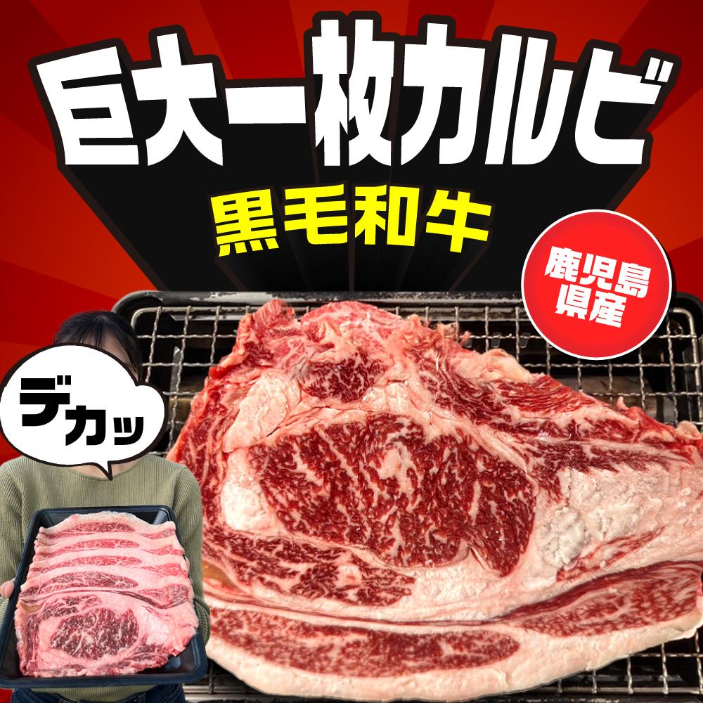 大判カルビ 300g 宮崎県産黒毛和牛画像